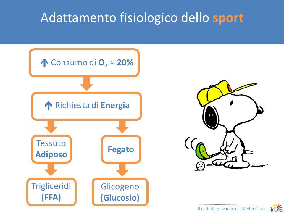 Adattamento fisiologico dello sport Il diabete giovanile e lattività fisica Consumo di O 2 20% Trigliceridi (FFA) Tessuto Adiposo Glicogeno (Glucosio)
