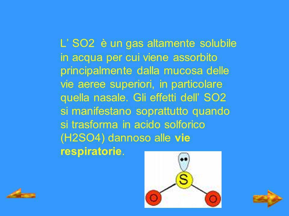 L SO2 è un gas altamente solubile in acqua per cui viene assorbito principalmente dalla mucosa delle vie aeree superiori, in particolare quella nasale