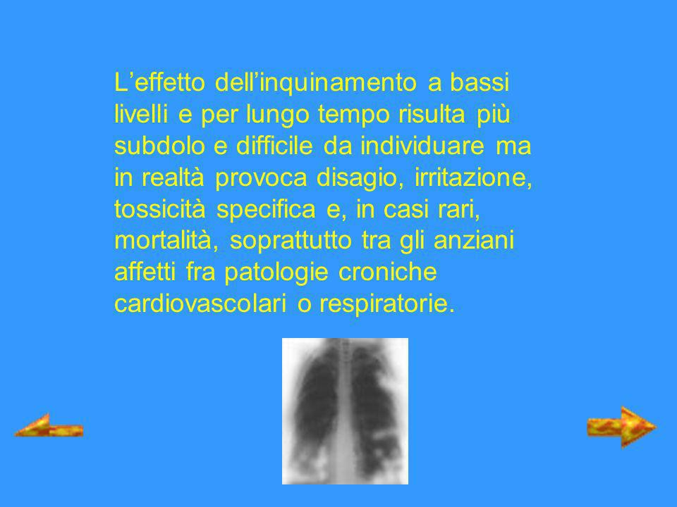 Tra gli effetti a lungo termine causati dellesposizione a concentrazioni basse di sostanze inquinanti vi sono le malattie polmonari croniche aspecifiche come la bronchite cronica, lasma, lenfisema; le neoplasie maligne come il cancro polmonare, le leucemie; laumento della mortalità per malattie cardiovascolari e respiratorie.