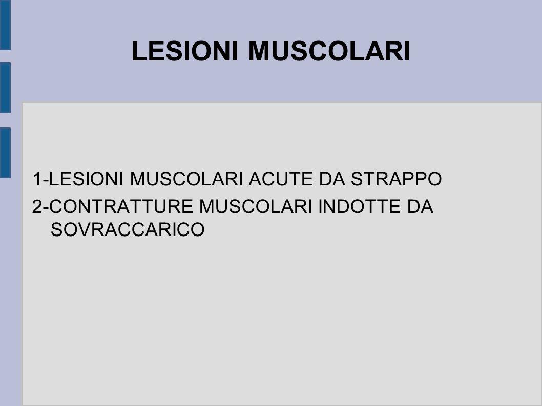 LESIONI MUSCOLARI 1-LESIONI MUSCOLARI ACUTE DA STRAPPO 2-CONTRATTURE MUSCOLARI INDOTTE DA SOVRACCARICO