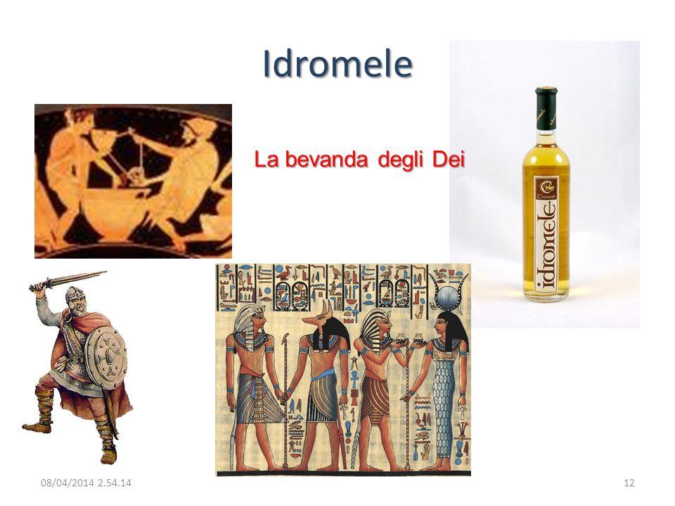 Idromele La bevanda degli Dei 08/04/2014 2.56.0012