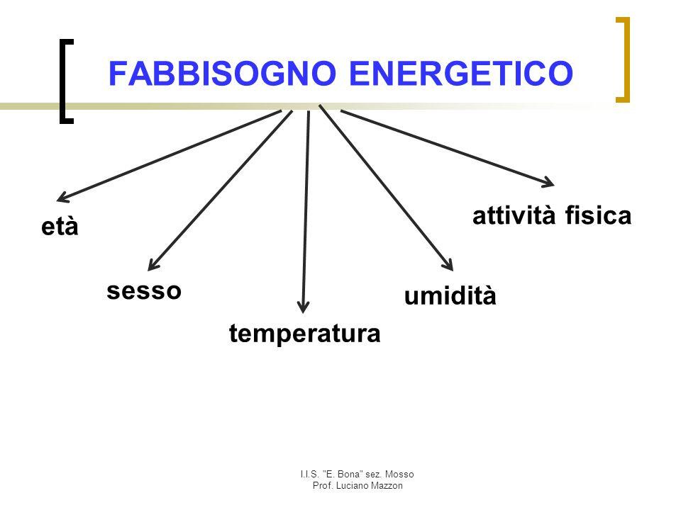 I.I.S. E. Bona sez. Mosso Prof. Luciano Mazzon Piramide alimentare