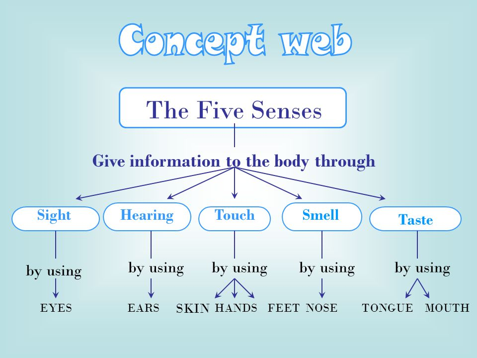The Five Senses Give information to the body through SightHearingTouch by using EYESEARS SKIN HANDS FEET NOSETONGUEMOUTH Smell Taste