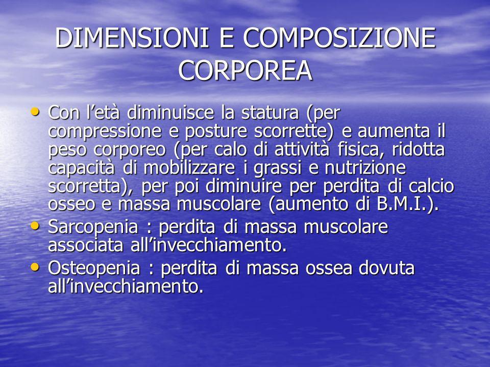 DIMENSIONI E COMPOSIZIONE CORPOREA Con letà diminuisce la statura (per compressione e posture scorrette) e aumenta il peso corporeo (per calo di attiv