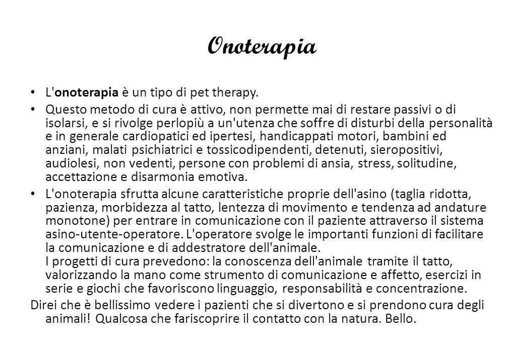 Onoterapia L'onoterapia è un tipo di pet therapy. Questo metodo di cura è attivo, non permette mai di restare passivi o di isolarsi, e si rivolge perl