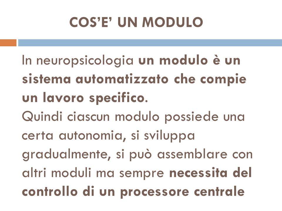 Lo sport può essere un valido alleato al potenziamento delle risorse attentive proprio perchè lapprendimento motorio complesso richiede sempre lintervento durante la sua formazione del processore centrale.