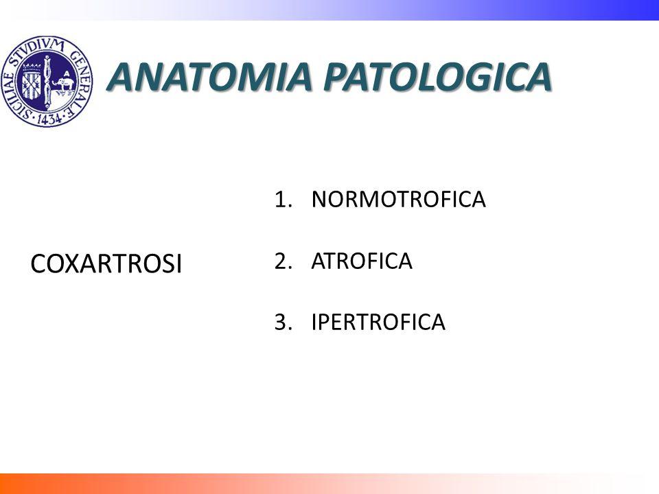 ANATOMIA PATOLOGICA 1.NORMOTROFICA 2.ATROFICA 3.IPERTROFICA COXARTROSI