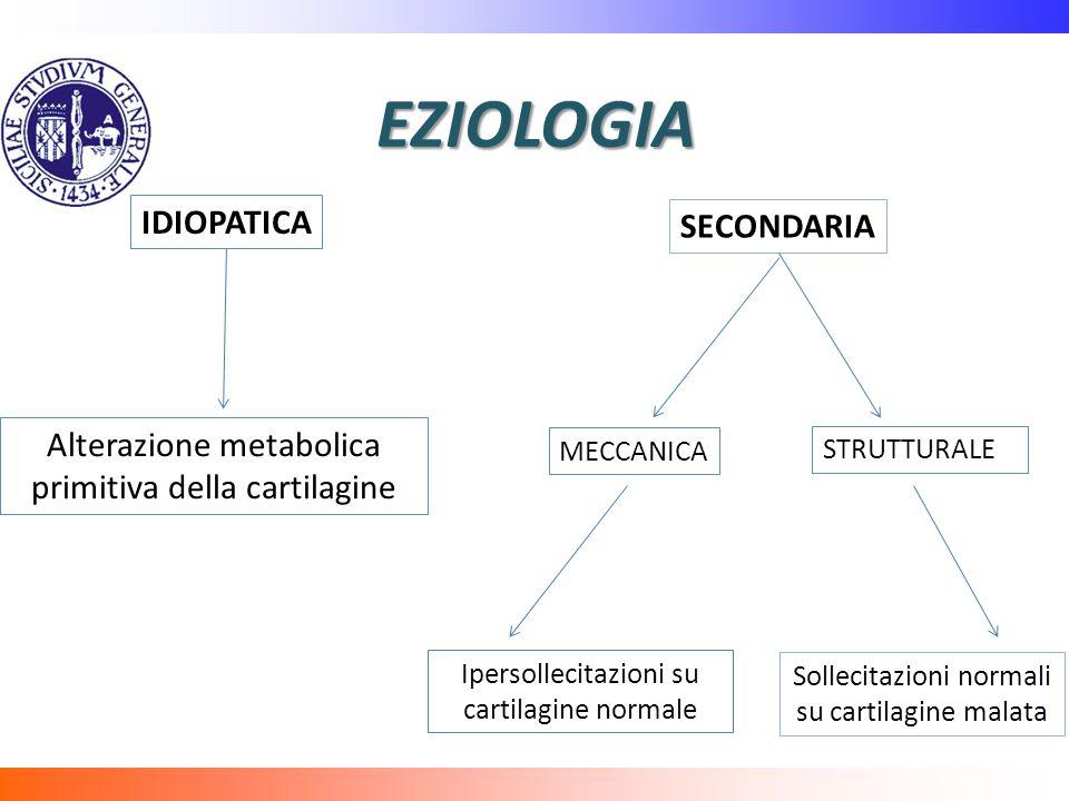 EZIOLOGIA IDIOPATICA SECONDARIA Alterazione metabolica primitiva della cartilagine MECCANICA STRUTTURALE Ipersollecitazioni su cartilagine normale Sollecitazioni normali su cartilagine malata