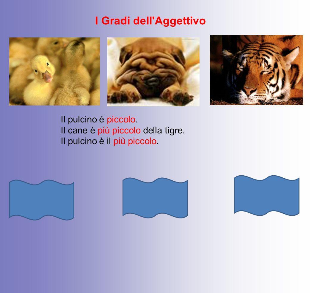 I Gradi dell'Aggettivo Il pulcino é piccolo. Il cane è più piccolo della tigre. Il pulcino è il più piccolo. Positivo Comparativo Superlativo