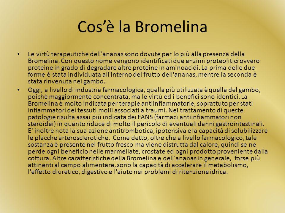 Cosè la Bromelina Le virtù terapeutiche dell'ananas sono dovute per lo più alla presenza della Bromelina. Con questo nome vengono identificati due enz