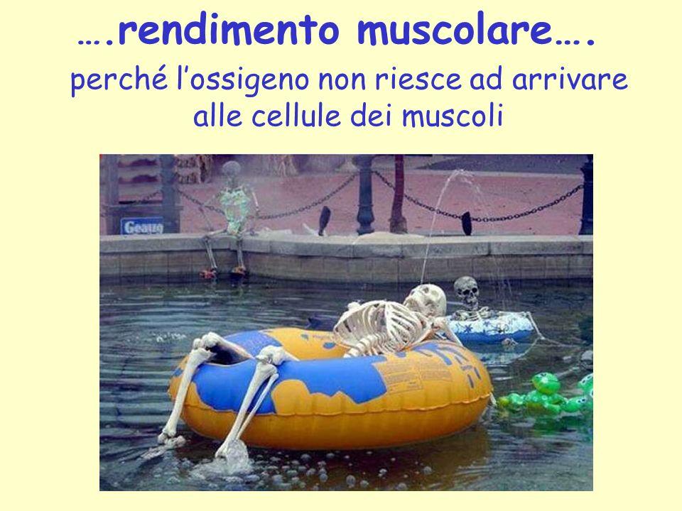 …. rendimento muscolare…. perché lossigeno non riesce ad arrivare alle cellule dei muscoli