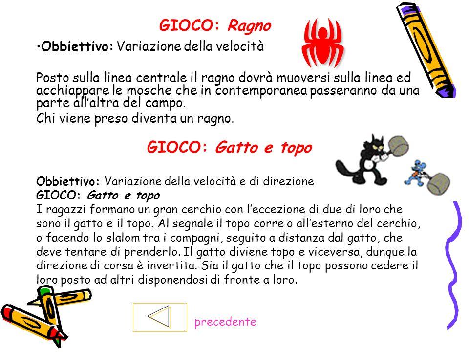 GIOCO: Ragno Obbiettivo: Variazione della velocità Posto sulla linea centrale il ragno dovrà muoversi sulla linea ed acchiappare le mosche che in cont