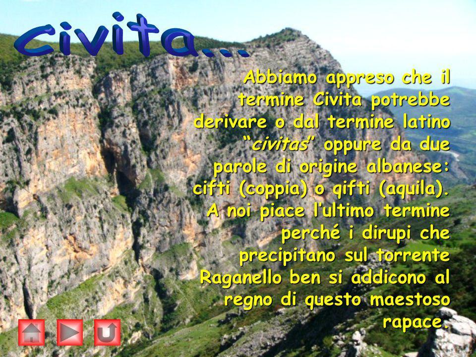 Abbiamo appreso che il termine Civita potrebbe derivare o dal termine latino civitas oppure da due parole di origine albanese: cifti (coppia) o qifti