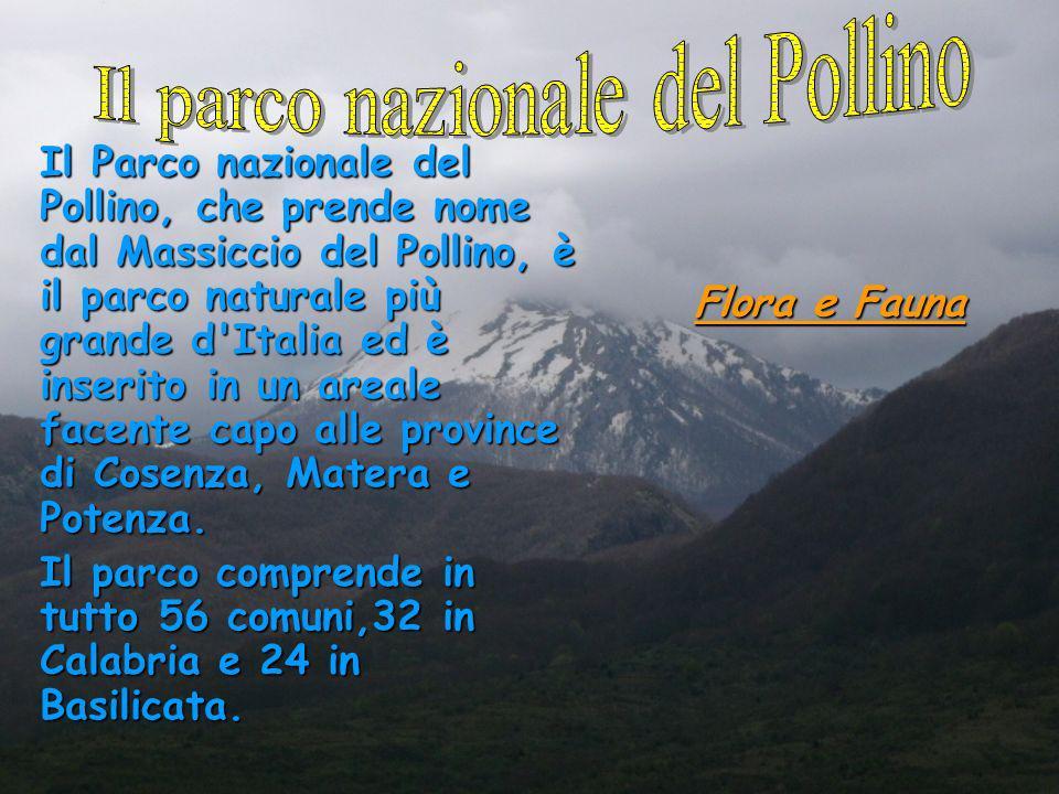 Il Parco nazionale del Pollino, che prende nome dal Massiccio del Pollino, è il parco naturale più grande d'Italia ed è inserito in un areale facente