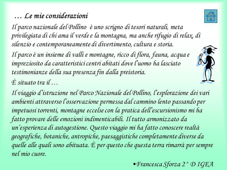 … Le mie considerazioni Il parco nazionale del Pollino è uno scrigno di tesori naturali, meta privilegiata di chi ama il verde e la montagna, ma anche