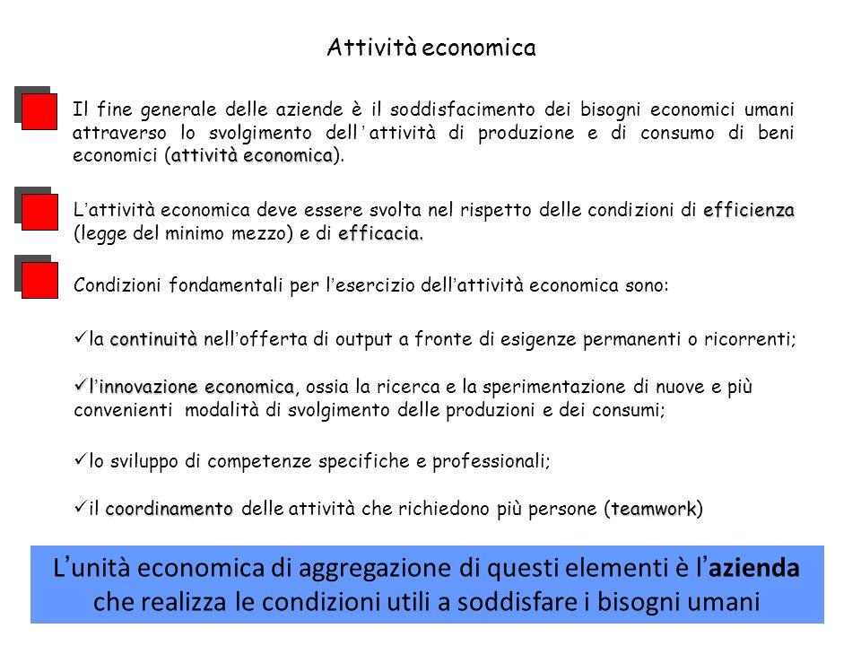 efficienza efficacia. Lattività economica deve essere svolta nel rispetto delle condizioni di efficienza (legge del minimo mezzo) e di efficacia. atti