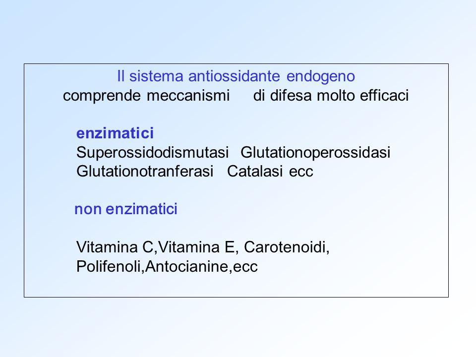 Il sistema antiossidante endogeno comprende meccanismi di difesa molto efficaci enzimatici Superossidodismutasi Glutationoperossidasi Glutationotranfe