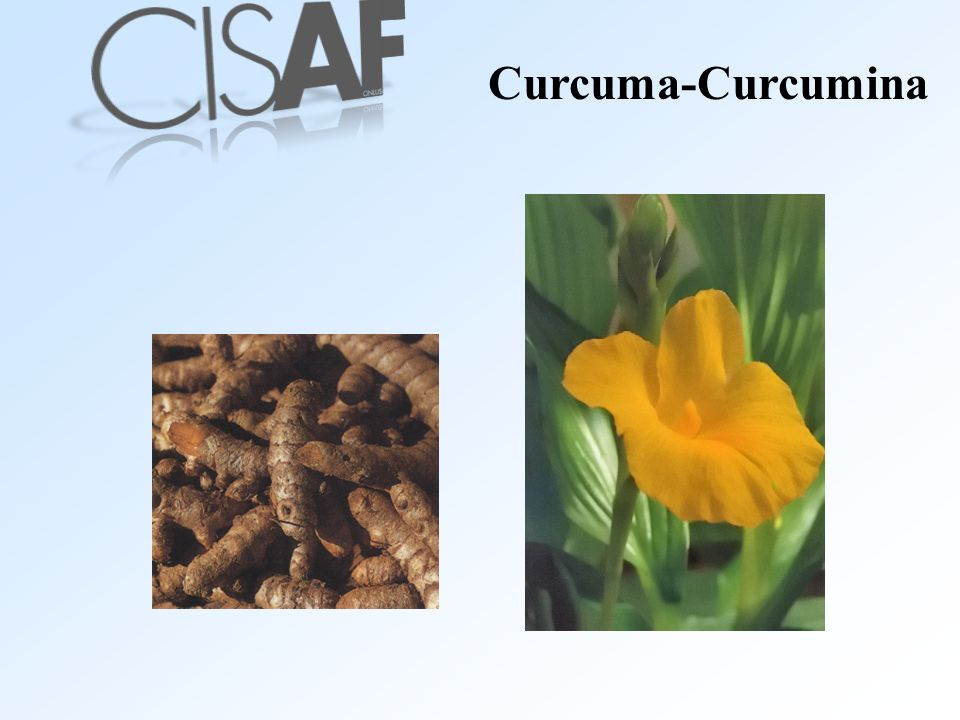 Curcuma-Curcumina