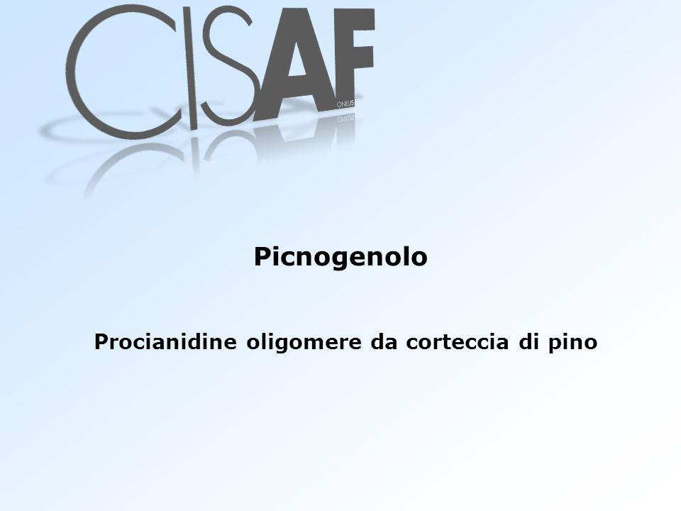 Picnogenolo Procianidine oligomere da corteccia di pino