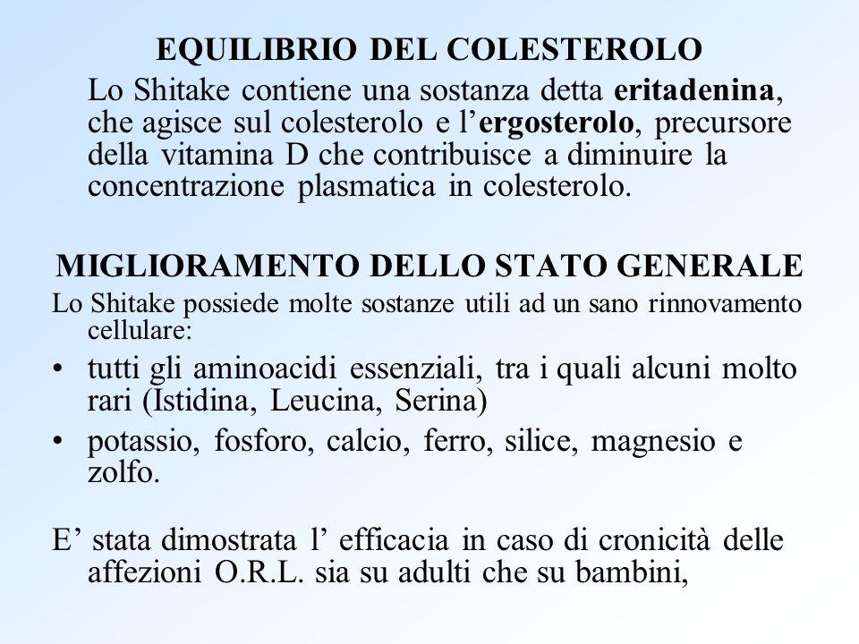 EQUILIBRIO DEL COLESTEROLO Lo Shitake contiene una sostanza detta eritadenina, che agisce sul colesterolo e lergosterolo, precursore della vitamina D