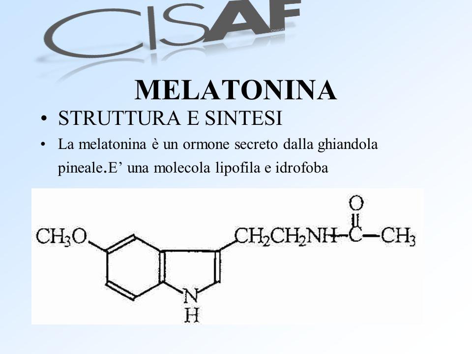 MELATONINA STRUTTURA E SINTESI La melatonina è un ormone secreto dalla ghiandola pineale. E una molecola lipofila e idrofoba