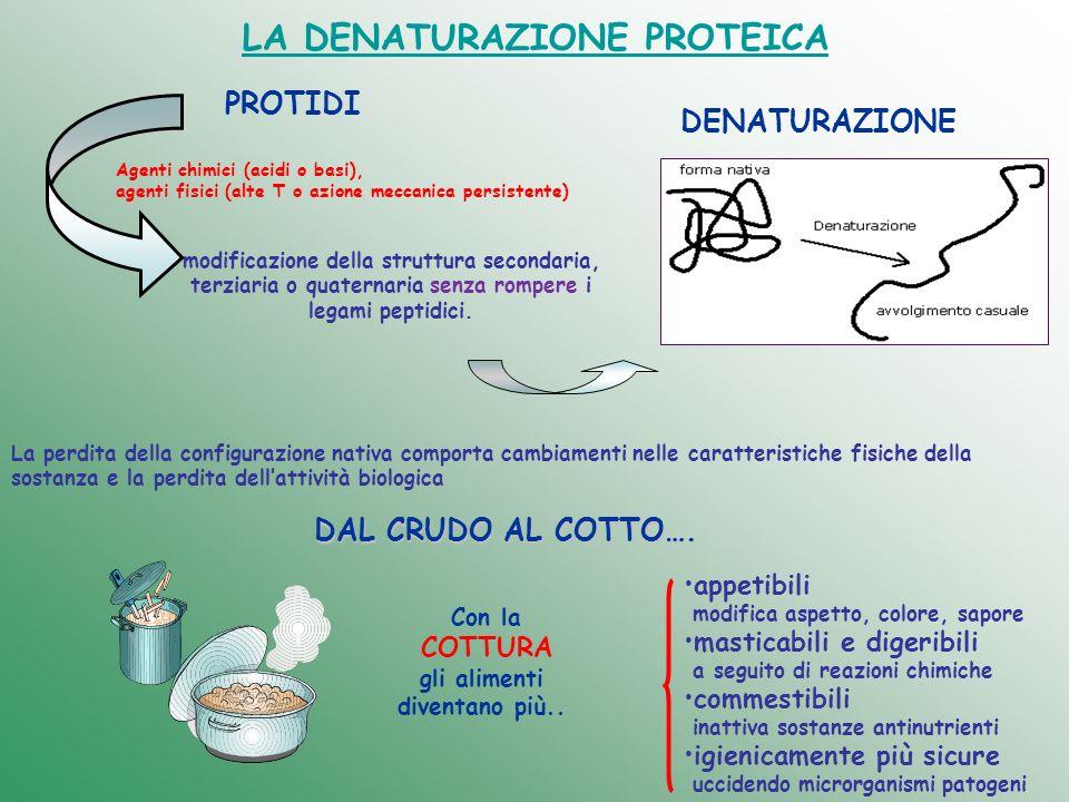 LA DENATURAZIONE PROTEICA modificazione della struttura secondaria, terziaria o quaternaria senza rompere i legami peptidici. PROTIDI Agenti chimici (