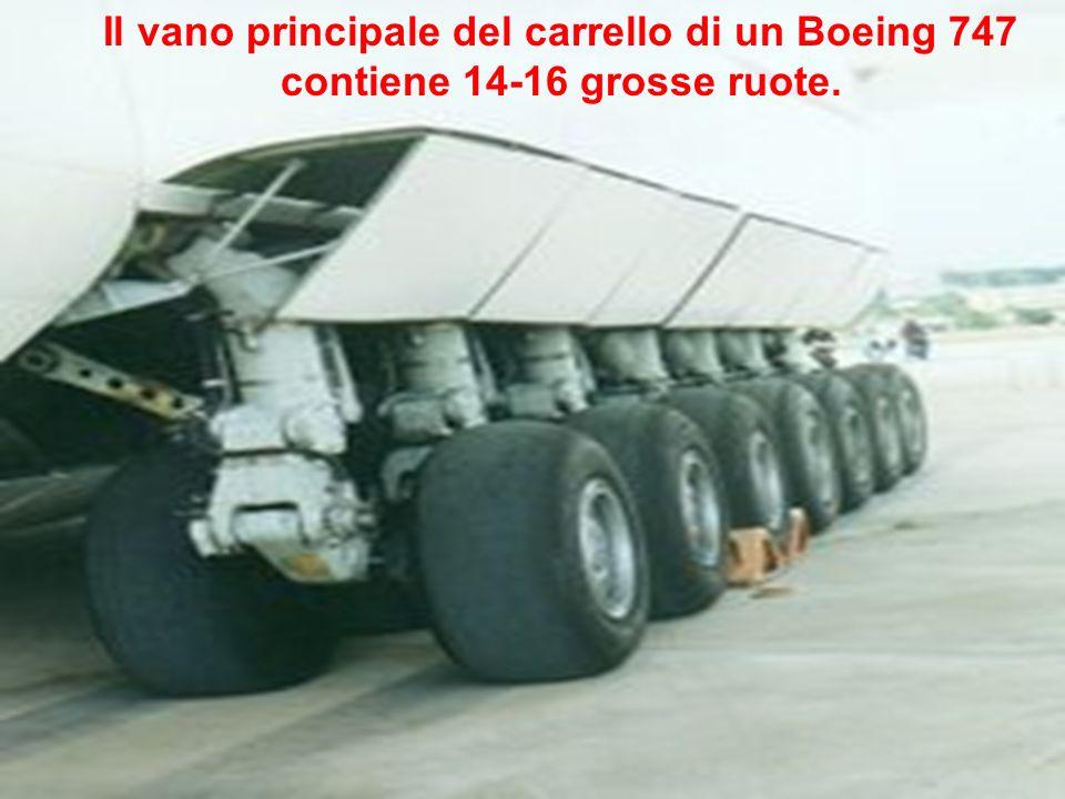 Il vano principale del carrello di un Boeing 747 contiene 14-16 grosse ruote.