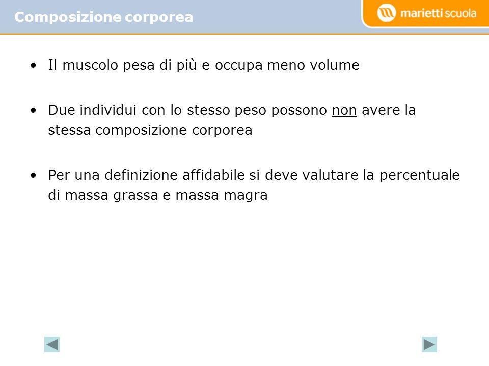 Il muscolo pesa di più e occupa meno volume Due individui con lo stesso peso possono non avere la stessa composizione corporea Per una definizione aff
