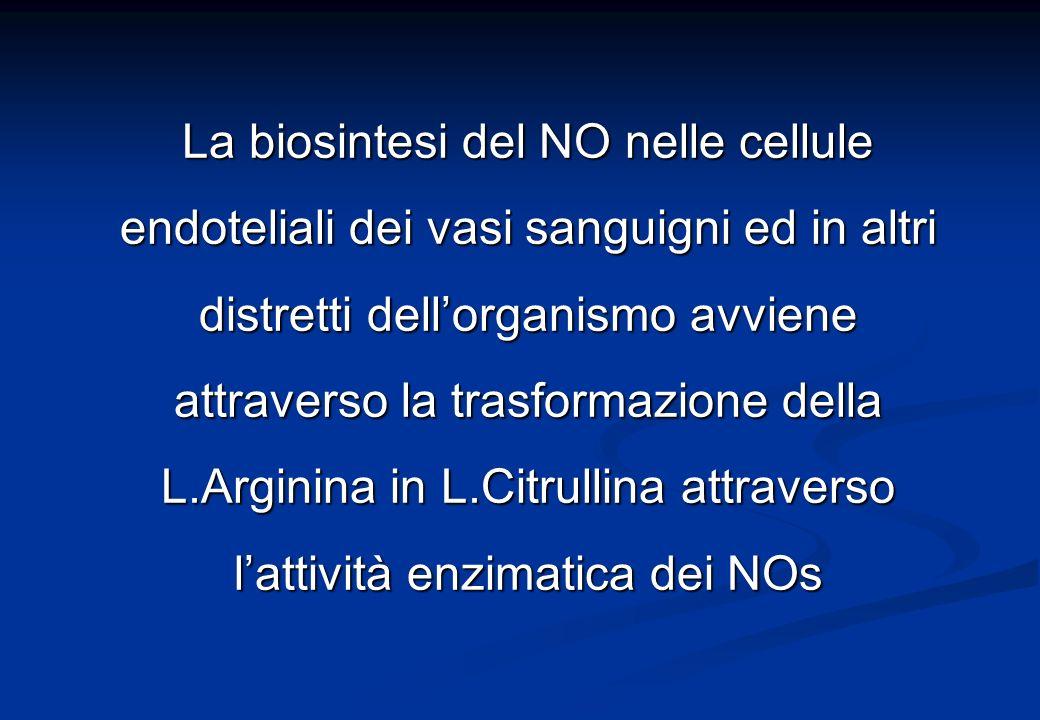 La biosintesi del NO nelle cellule endoteliali dei vasi sanguigni ed in altri distretti dellorganismo avviene attraverso la trasformazione della L.Arginina in L.Citrullina attraverso lattività enzimatica dei NOs