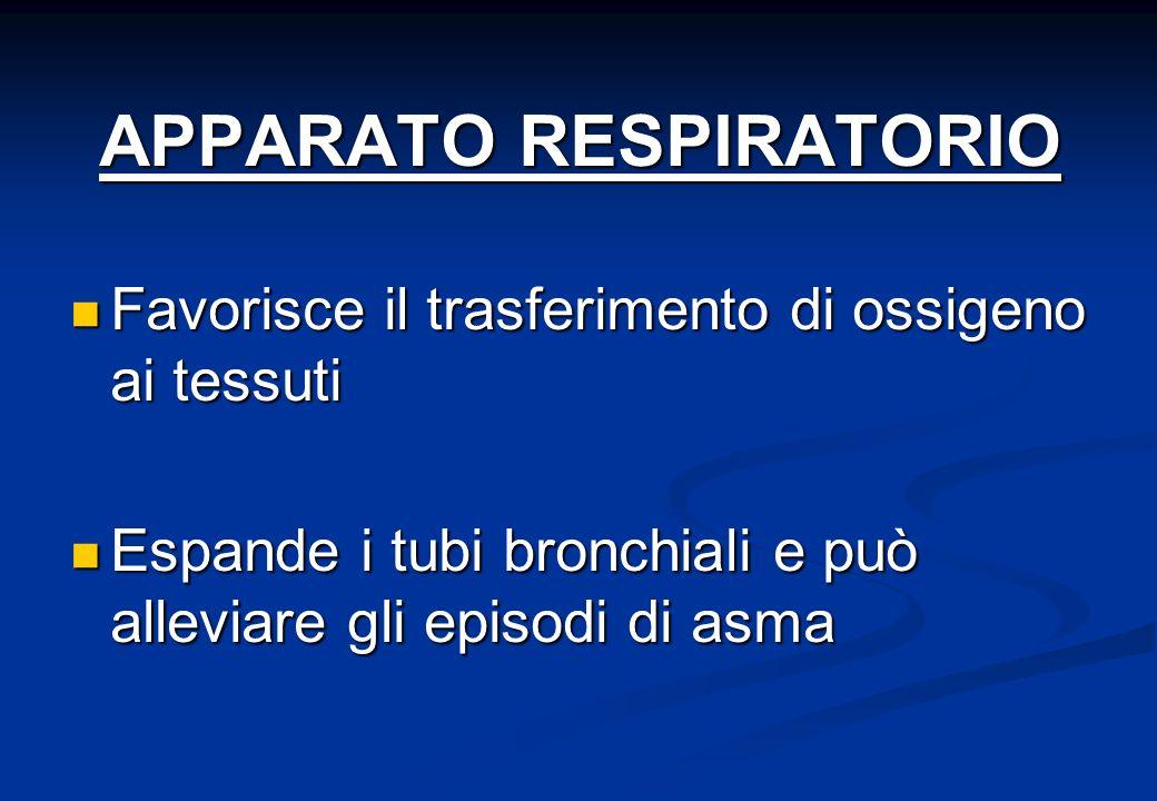 APPARATO RESPIRATORIO Favorisce il trasferimento di ossigeno ai tessuti Favorisce il trasferimento di ossigeno ai tessuti Espande i tubi bronchiali e può alleviare gli episodi di asma Espande i tubi bronchiali e può alleviare gli episodi di asma