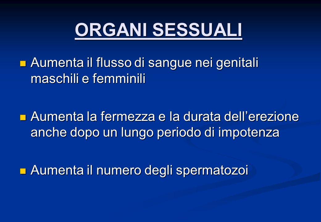 ORGANI SESSUALI Aumenta il flusso di sangue nei genitali maschili e femminili Aumenta il flusso di sangue nei genitali maschili e femminili Aumenta la fermezza e la durata dellerezione anche dopo un lungo periodo di impotenza Aumenta la fermezza e la durata dellerezione anche dopo un lungo periodo di impotenza Aumenta il numero degli spermatozoi Aumenta il numero degli spermatozoi