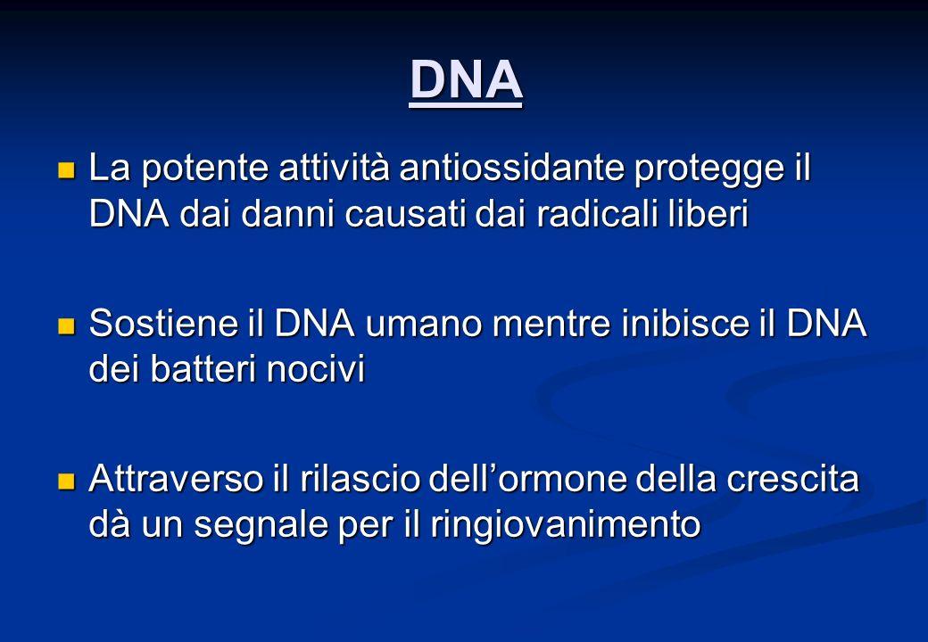 DNA La potente attività antiossidante protegge il DNA dai danni causati dai radicali liberi La potente attività antiossidante protegge il DNA dai danni causati dai radicali liberi Sostiene il DNA umano mentre inibisce il DNA dei batteri nocivi Sostiene il DNA umano mentre inibisce il DNA dei batteri nocivi Attraverso il rilascio dellormone della crescita dà un segnale per il ringiovanimento Attraverso il rilascio dellormone della crescita dà un segnale per il ringiovanimento