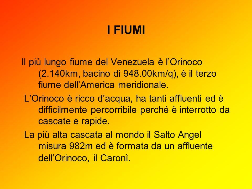 I FIUMI Il più lungo fiume del Venezuela è lOrinoco (2.140km, bacino di 948.00km/q), è il terzo fiume dellAmerica meridionale. LOrinoco è ricco dacqua