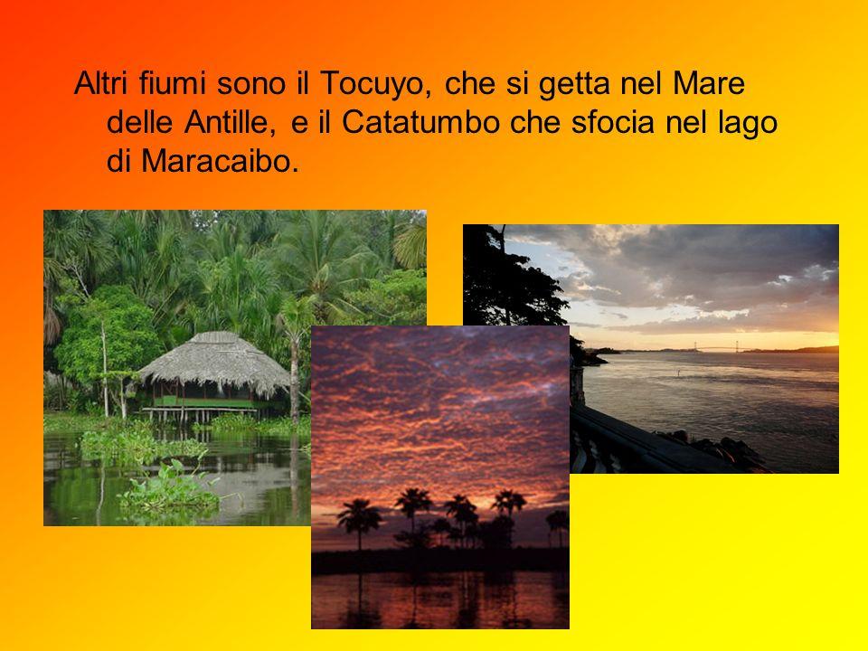 Altri fiumi sono il Tocuyo, che si getta nel Mare delle Antille, e il Catatumbo che sfocia nel lago di Maracaibo.