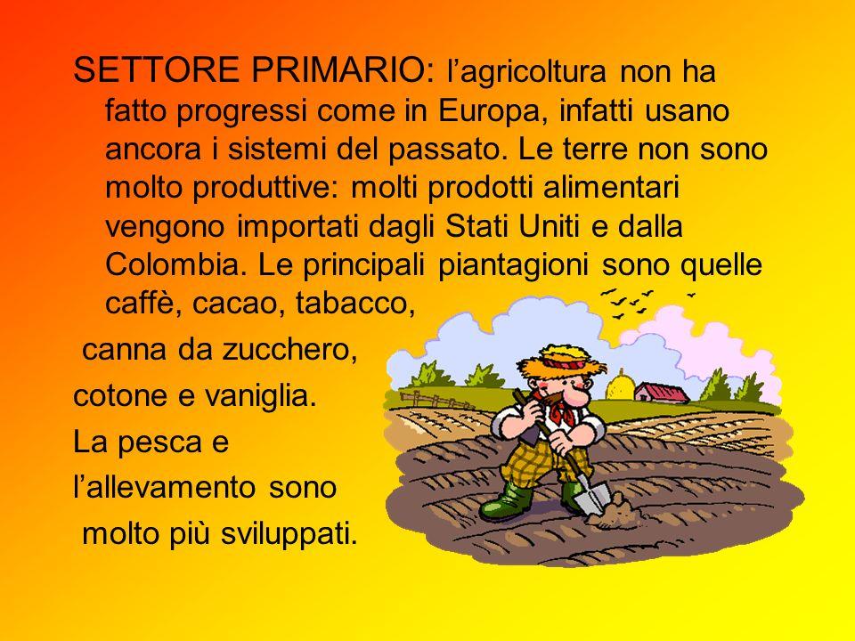 SETTORE PRIMARIO: lagricoltura non ha fatto progressi come in Europa, infatti usano ancora i sistemi del passato. Le terre non sono molto produttive: