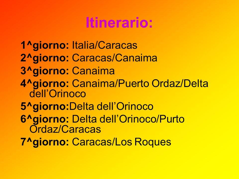 Itinerario: 1^giorno: Italia/Caracas 2^giorno: Caracas/Canaima 3^giorno: Canaima 4^giorno: Canaima/Puerto Ordaz/Delta dellOrinoco 5^giorno:Delta dellO