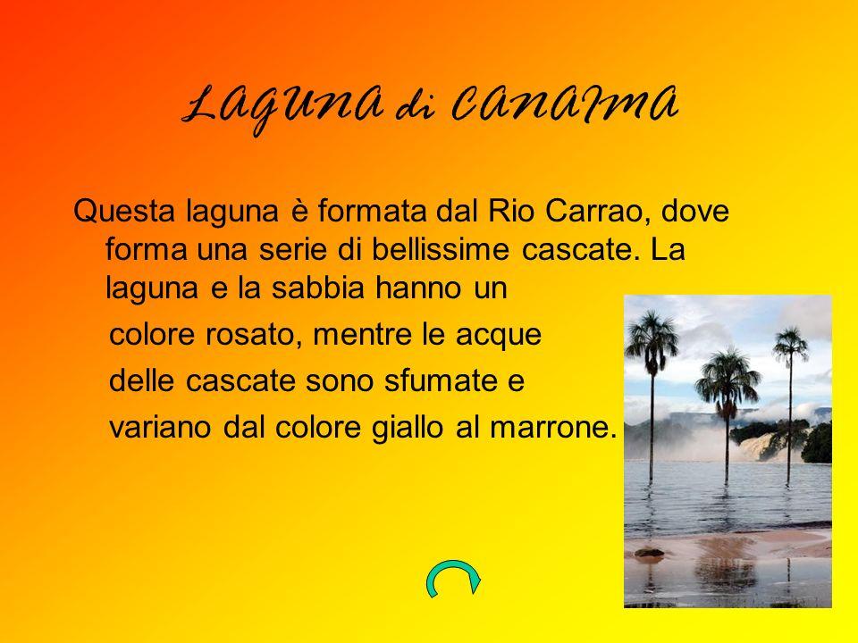 LAGUNA di CANAIMA Questa laguna è formata dal Rio Carrao, dove forma una serie di bellissime cascate. La laguna e la sabbia hanno un colore rosato, me