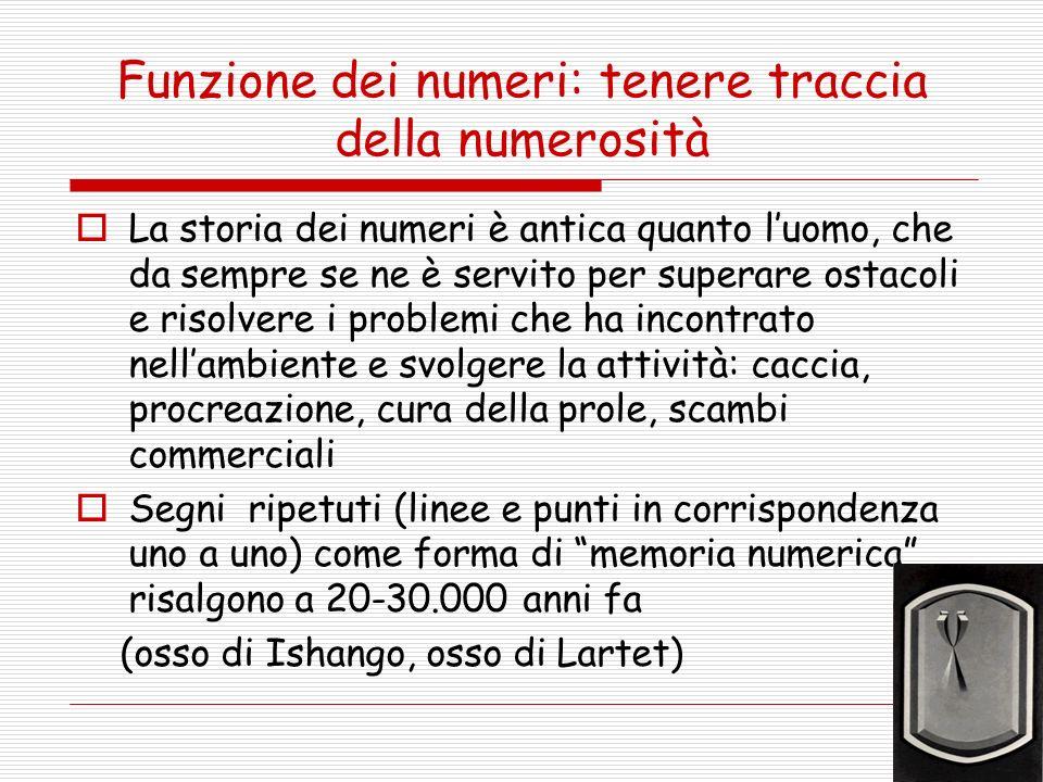 Funzione dei numeri: tenere traccia della numerosità La storia dei numeri è antica quanto luomo, che da sempre se ne è servito per superare ostacoli e