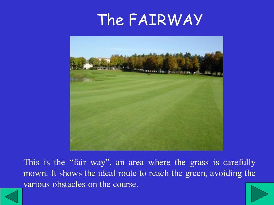 Questa è la via corretta , dove l erba è accuratamente rasata, che indica il percorso ideale da seguire per raggiungere il green evitando i vari ostacoli presenti sul percorso.