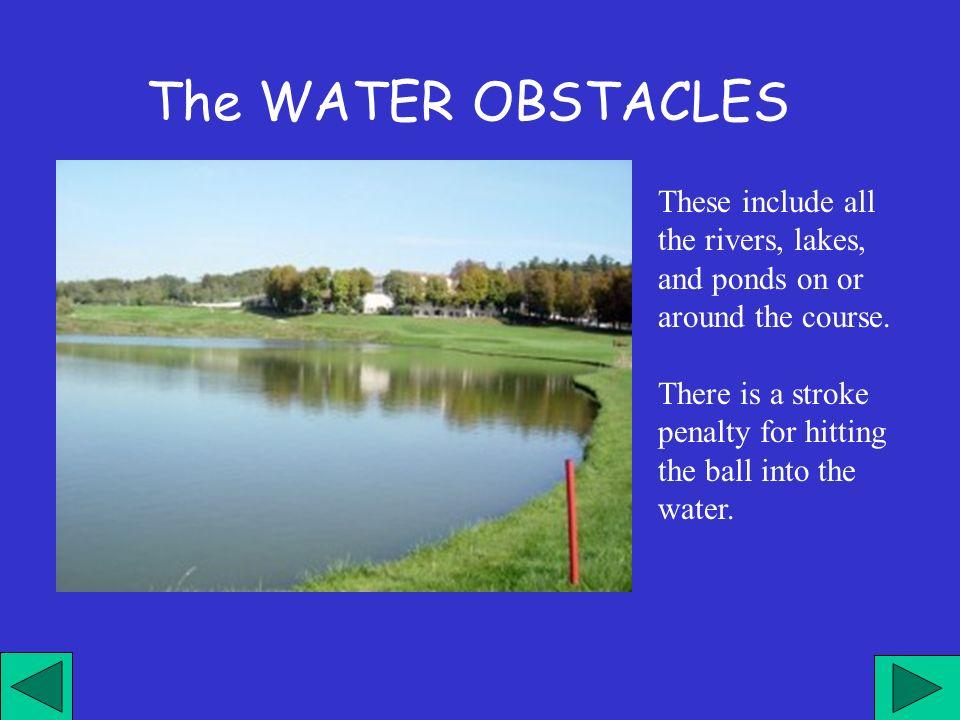 Sono tutti i fiumi, i laghi, gli stagni e tutti i percorsi d acqua presenti sul campo.