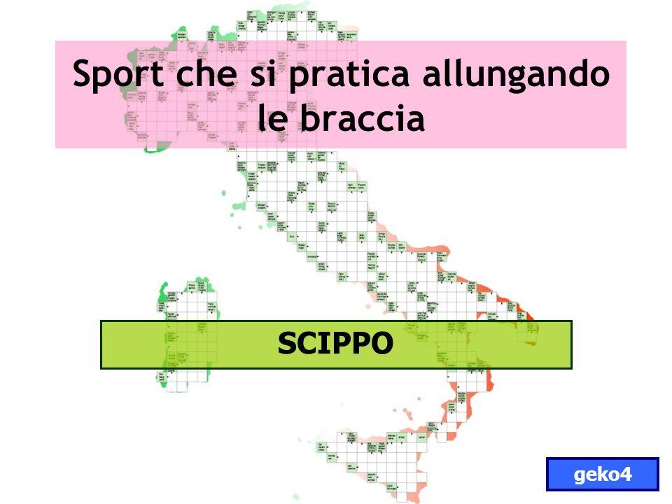 Sport che si pratica allungando le braccia SCIPPO geko4