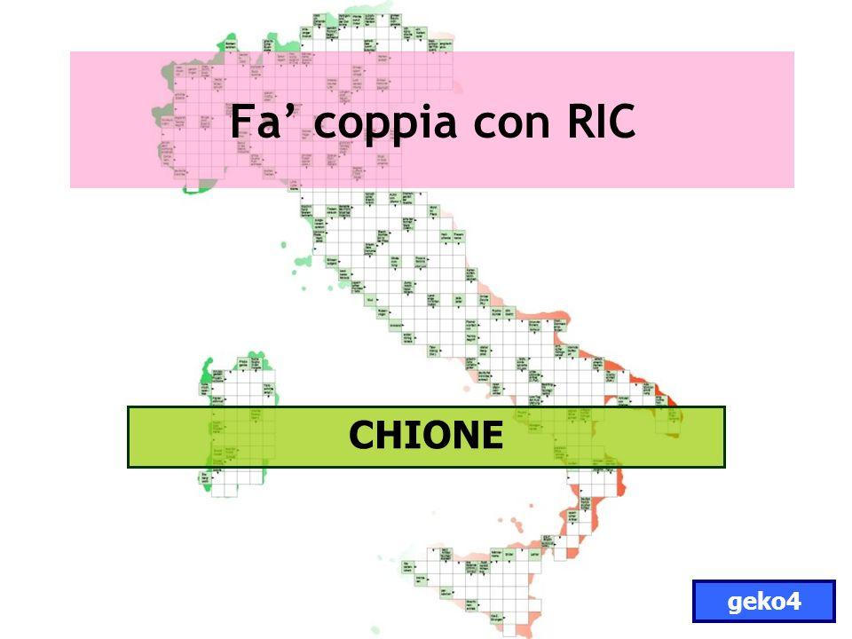 Fa coppia con RIC CHIONE geko4