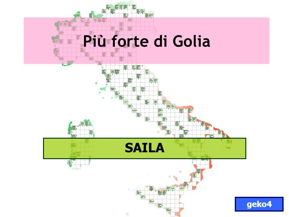 Più forte di Golia SAILA geko4