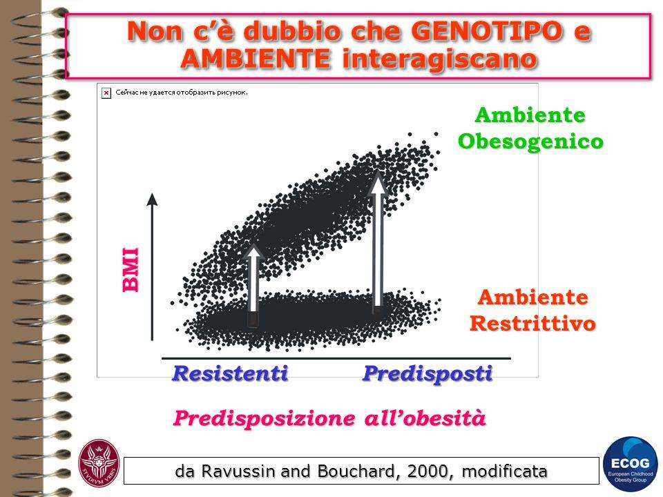 Non cè dubbio che GENOTIPO e AMBIENTE interagiscano da Ravussin and Bouchard, 2000, modificata Predisposizione allobesità ResistentiPredisposti BMI Am