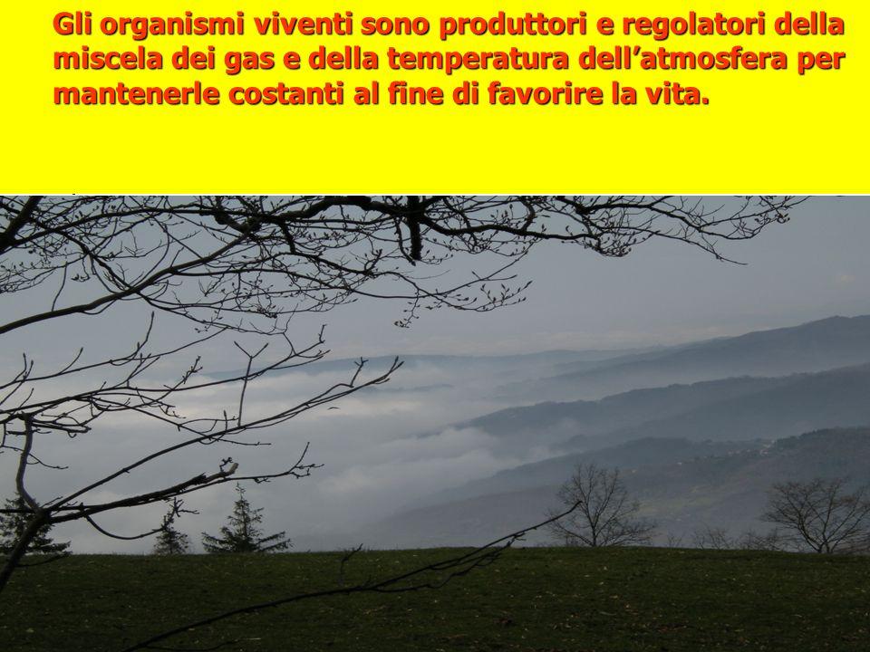 Gli organismi viventi sono produttori e regolatori della miscela dei gas e della temperatura dellatmosfera per mantenerle costanti al fine di favorire la vita.