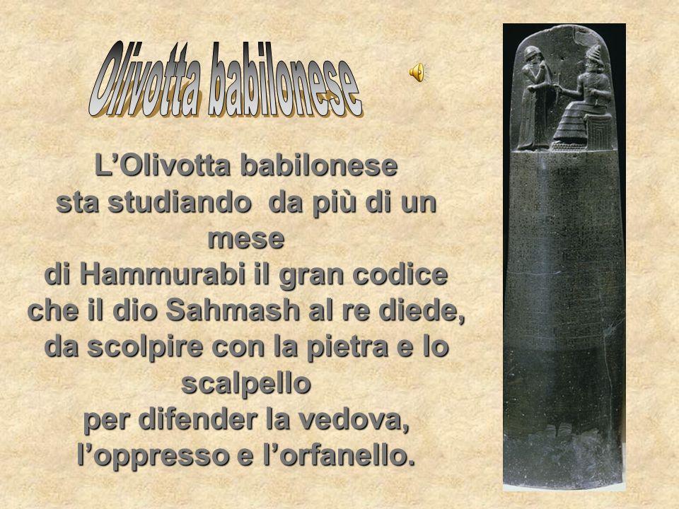 LOlivotta babilonese sta studiando da più di un mese di Hammurabi il gran codice che il dio Sahmash al re diede, da scolpire con la pietra e lo scalpe