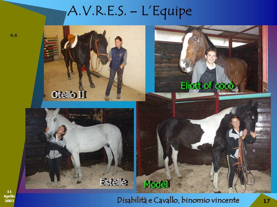 11 Aprile 2003 Disabilità e Cavallo, binomio vincente 17 A.V.R.E.S. – LEquipe 4.6 EstelleEstelle Otello II Eliott of cocò ModelModel