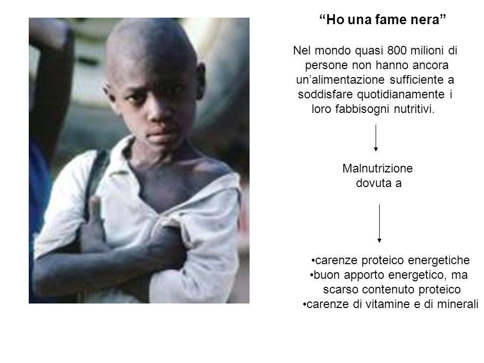Ho una fame nera Nel mondo quasi 800 milioni di persone non hanno ancora unalimentazione sufficiente a soddisfare quotidianamente i loro fabbisogni nutritivi.