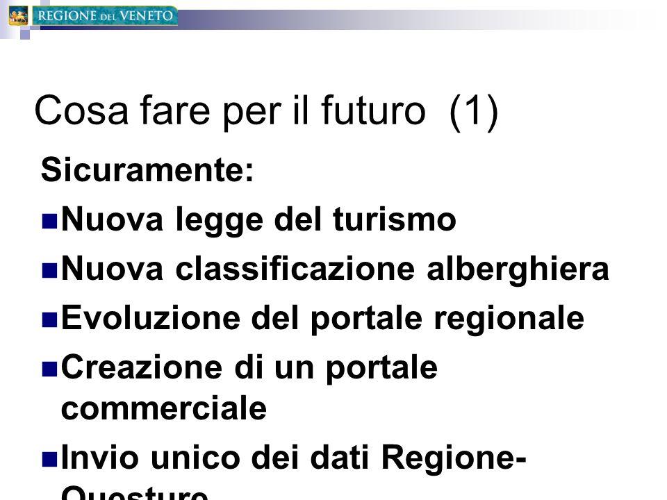 Cosa fare per il futuro (1) Sicuramente: Nuova legge del turismo Nuova classificazione alberghiera Evoluzione del portale regionale Creazione di un po