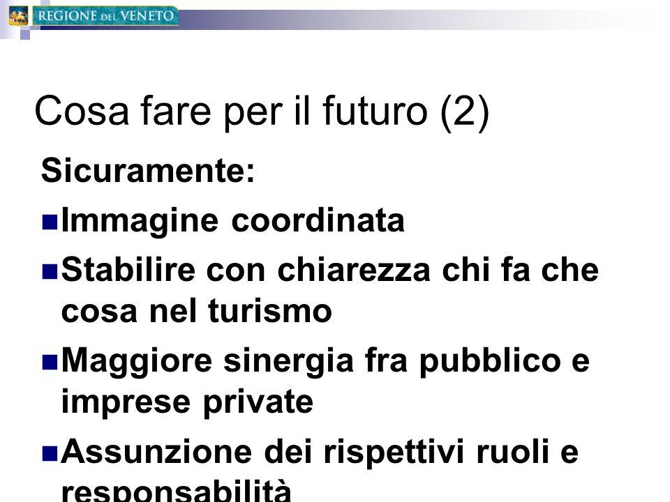 Cosa fare per il futuro (2) Sicuramente: Immagine coordinata Stabilire con chiarezza chi fa che cosa nel turismo Maggiore sinergia fra pubblico e impr